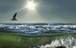 природа, Море, пена, солнце, чайки, волна