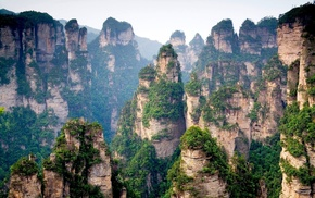 China, forest, rocks, nature, mountain