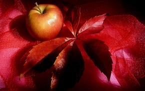 leaf, fruit, red, still life, delicious