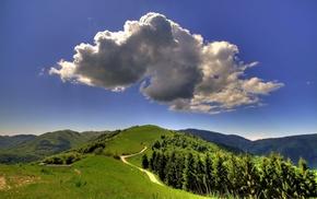 forest, hills, landscape, summer, nature