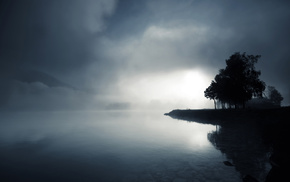 trees, nature, water, lake, mist