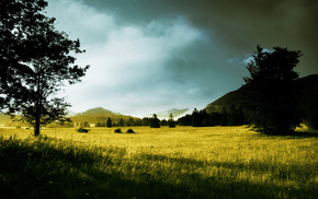 рассвет, утро, деревья, природа, солнечные лучи