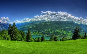 grass, hill, Walensee, green