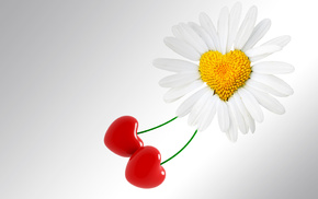 flower, background, holiday, heart
