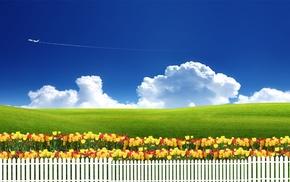sky, flowers, grass, tulips, grassland