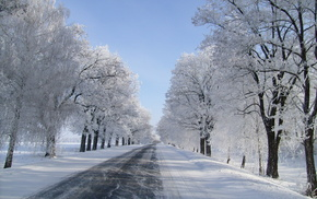 winter, road, snow, trees