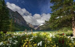 Canada, деревья, горы, Banff National Park, озеро, Lake Louise