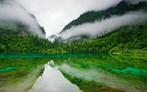 Природа, зелень, туман, озеро, горы