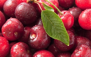 macro, вкусно, вишня, черешня, макро, сладкая