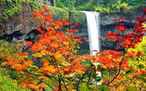 клен, Осень, водопад