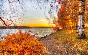 autumn, landscape, lake, nature, leaves