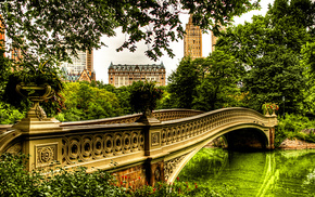 trees, greenery, river, bridge, cities