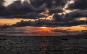 orange, Sun, bird, sky, sunset