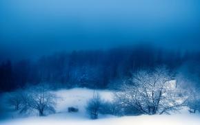 вечер, Зима, природа, снег, туман