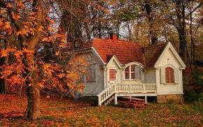 house, leaves, autumn, nature, tree