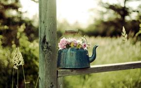 stunner, flowers, background