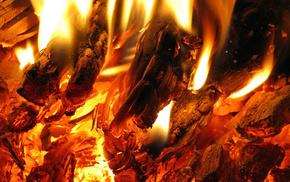 macro, flame, fire