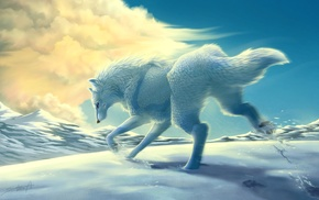 animals, snow, wolf, clouds, mountain
