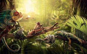 light, animals, jungle