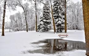 пейзаж, парк, зима