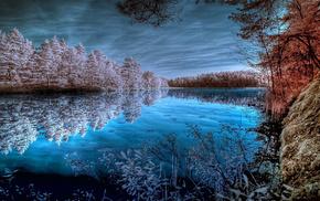 водоём, природа, Озеро, деревья, пруд, берег