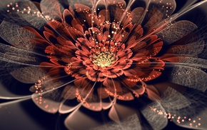 3D, abstraction, petals, art, flower