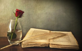 rose, vase, stunner, table, book