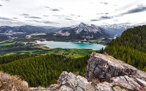 alberta, лес, озеро, природа, канада, canada