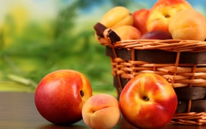 apricots, абрикосы, peaches, нектарин, Персики, fruit