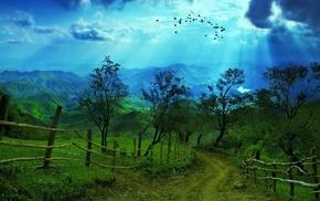 горы, лучи, природа, деревья, зелень, птицы