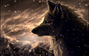 snow, animals, wolf, forest, mountain