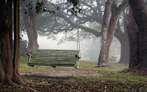autumn, trees, park, mist
