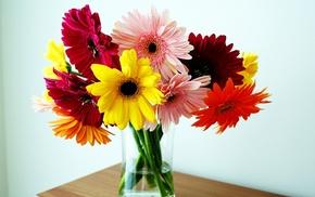 vase, flowers, bouquet