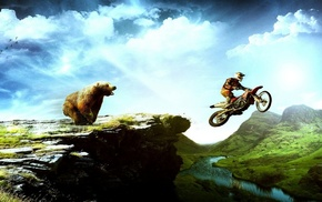 creative, bear, moto