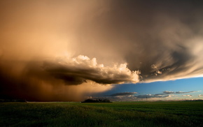 nature, field, rain, landscape