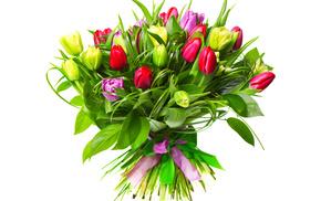 flowers, tulips, bouquet