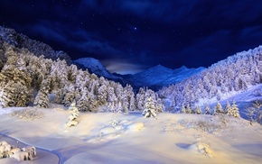 forest, stars, snow, mountain, Christmas tree