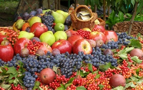 delicious, grapes, apples, berries, fruits