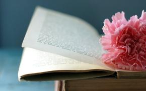flower, macro, book