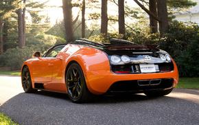 Машины, автомобили, vitesse, бугатти вейрон, bugatti veyron, спорт