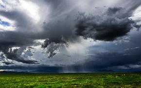 field, nature, landscape, rain