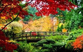 bridge, trees, leaves, autumn, nature