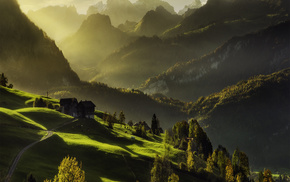forest, light, mountain, nature, houses