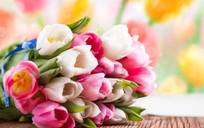 tulips, spring, bouquet, flowers