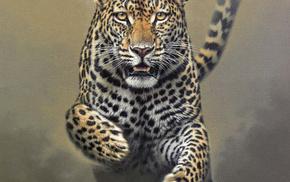 animals, speed, leopard, bounce