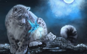 fantasy, kitten, bird, night, moon