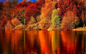 reflection, trees, autumn, river