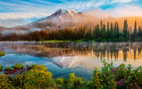 mist, nature, forest, summer, lake