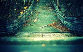 autumn, leaves, twigs, stunner, bridge