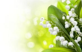 highlights, motion blur, spring, flowers